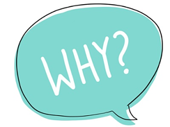 15_Why-1
